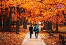 Photo of روانشناسی رنگ نارنجی/ رنگ جلب توجه را می شناسید؟