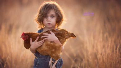 Photo of مرگ حیوانات خانگی چه تاثیری بر کودک دارد